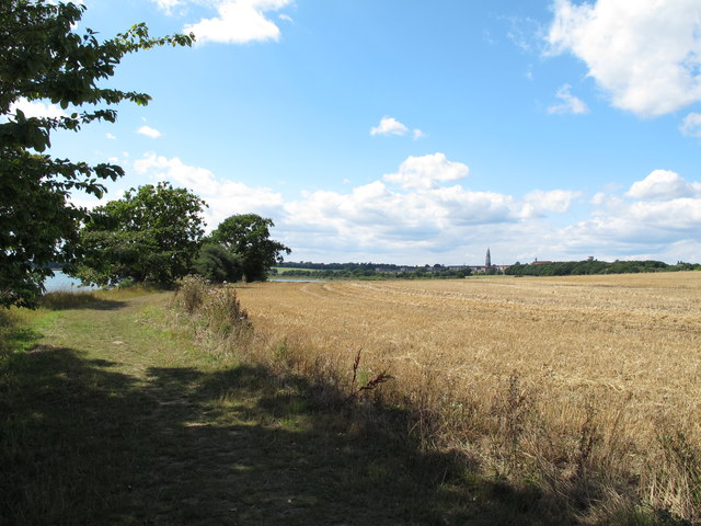 Arable land, north of the river