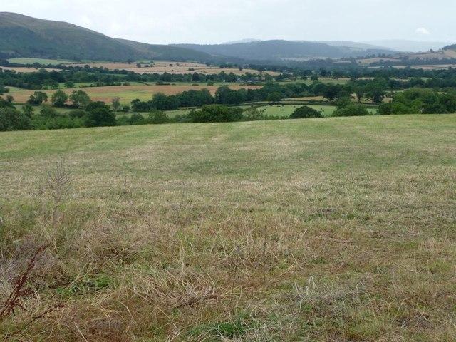 Green Shropshire
