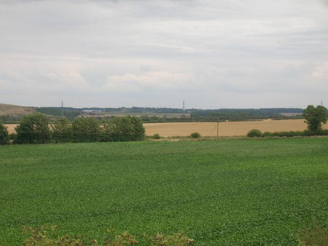 Farmland, Wadworth Hill