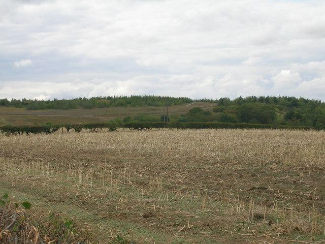 Farmland off Wood Lane