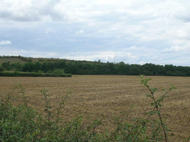 Farmland near Spring Farm