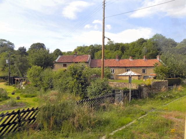 Houses at Newbridge