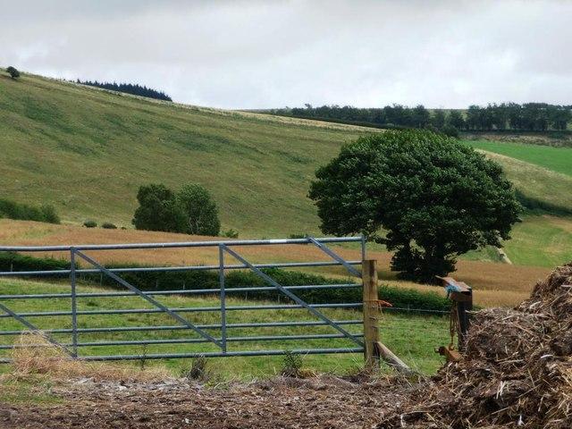 Gate into hillside fields