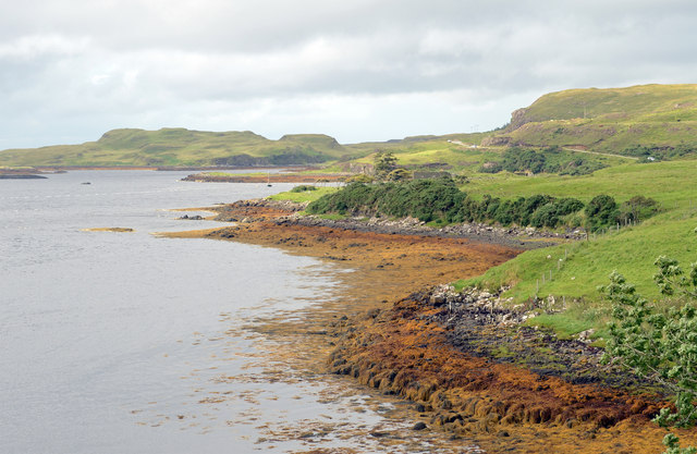 Bank of Loch Dunvegan