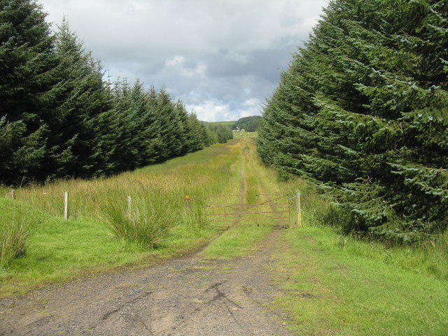 Track at Cockmuir