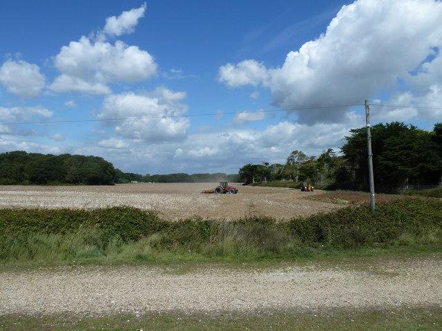 Along the coast from Atherington to Elmer (2)