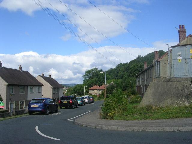 Lilac Grove - Gaisby Lane