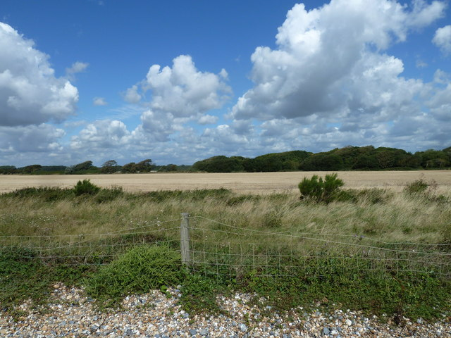 Along the coast from Atherington to Elmer (7)