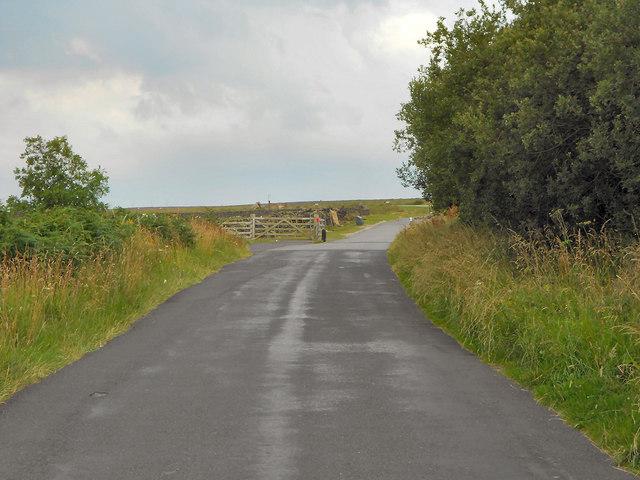 Cattle Grid, Fair Head Lane