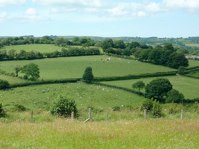 Farmland north-east of  Llwyn-y-Groes, Ceredigion