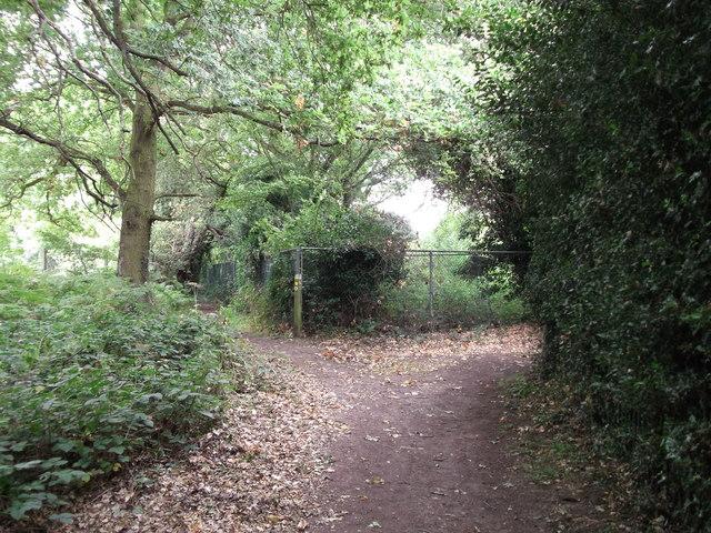 Footpath junction near Chislehurst Cemetery