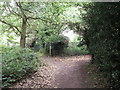 TQ4571 : Footpath junction near Chislehurst Cemetery by David Anstiss