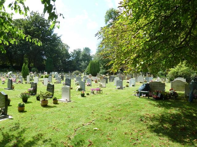 Abbotts Ann - St Mary: churchyard (1)