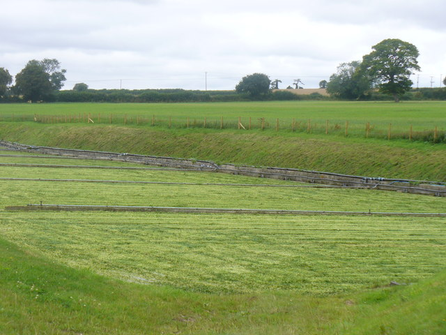 Watercress Country