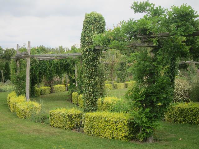 Pergola at Yalding gardens