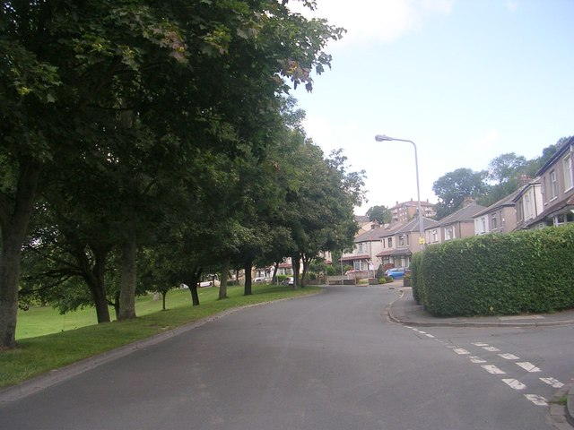 Poplar Crescent - viewed from Poplar Grove