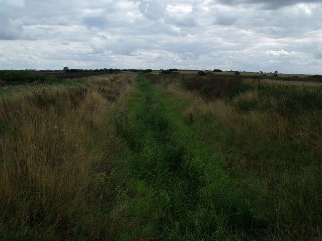 Dorrington Dyke