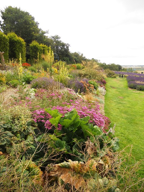 Yorkshire Herbaceous Border