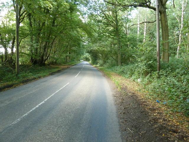 Monteswood Lane towards Montes Hill