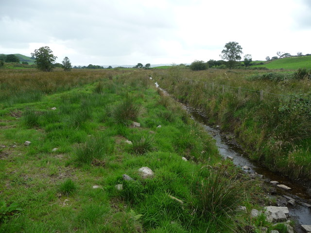 Drainage ditch at the field edge