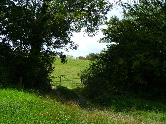 Field gate on footpath near Perching Sands Farm