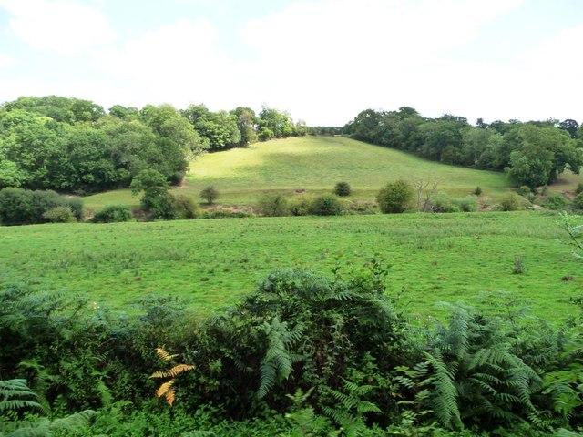 Many shades of green along the Severn