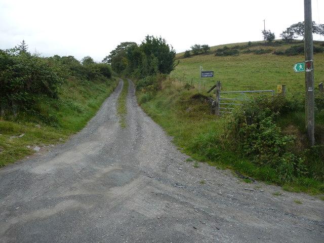 Farm track to Gilfach-y-dwn-fach