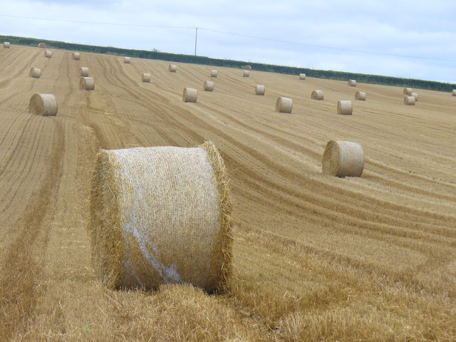 Straw Bales by Gundleton