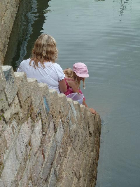 Crabbing - Brixham Harbour