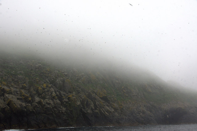 The slopes of Dun, St Kilda, in the mist