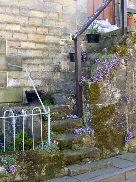 Steps, Lofthouse
