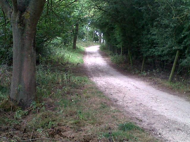 Rutland Water cycle track