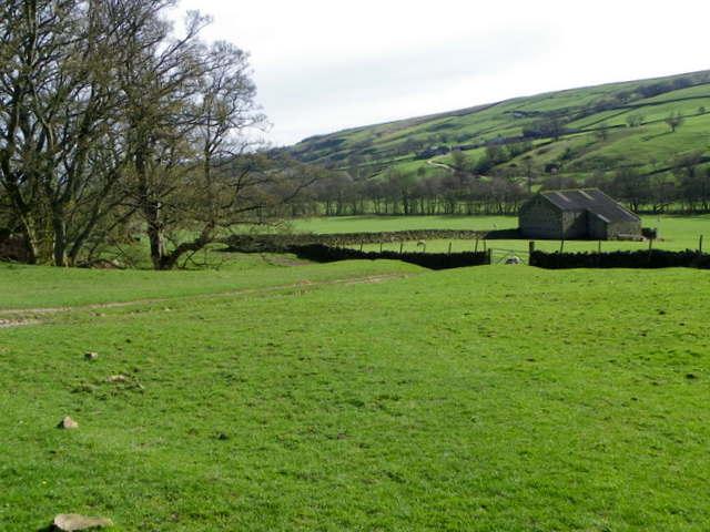 Small fields near Lofthouse
