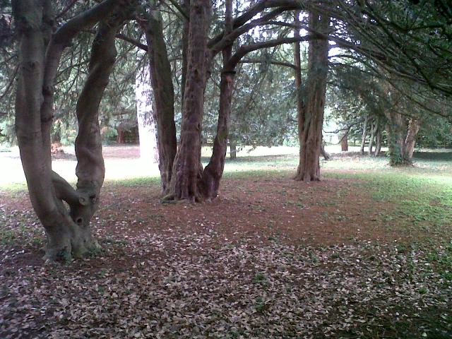 Park in central Oakham