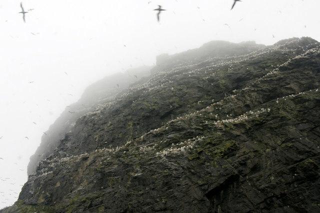The overhang of Stac Lee, Boreray, St Kilda