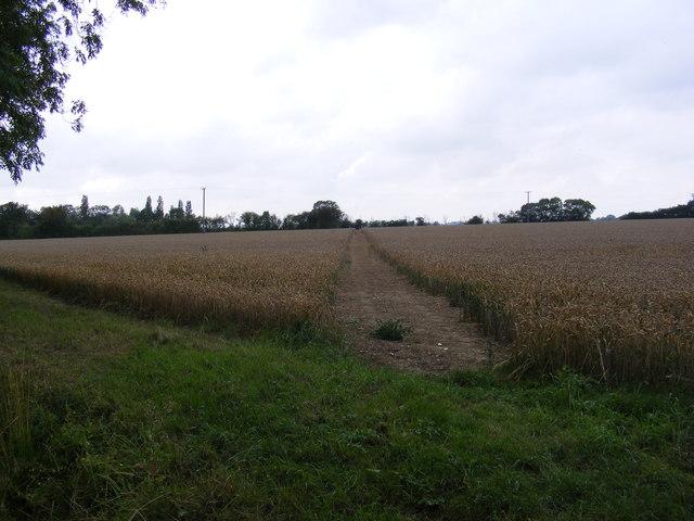Footpath to Snipe Farm Lane