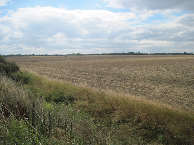 Empty  Fields  Harvest  Home