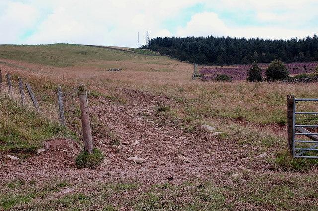 Muddy gateway below Meigle Hill