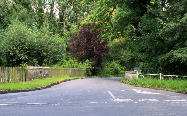 2011 : Station Road with copper beech, Boyton