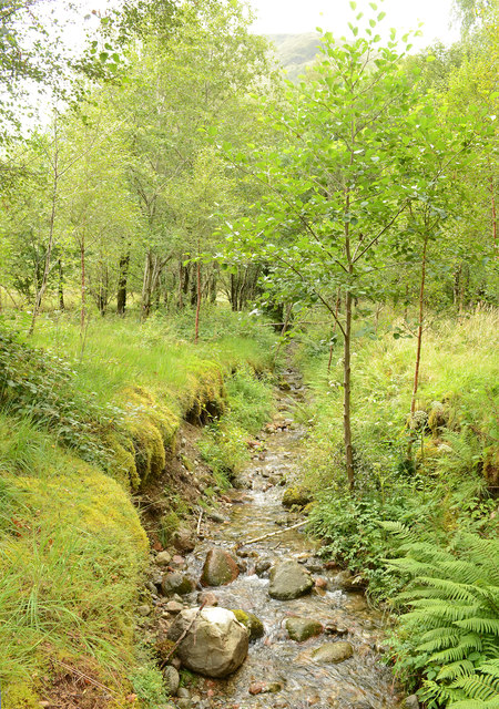 Stream at Glencoe Visitor Centre