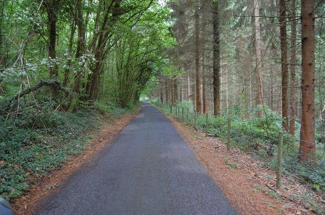 Lane through Park Coppice