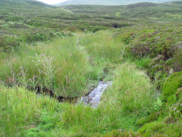 High in the course of Allt Crioch in Loch Ard Forest near Aberfoyle