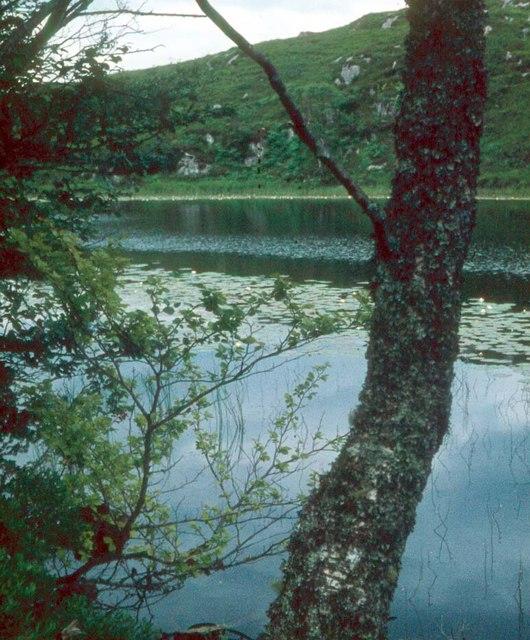 Lochain Ruighe a' Bhainne