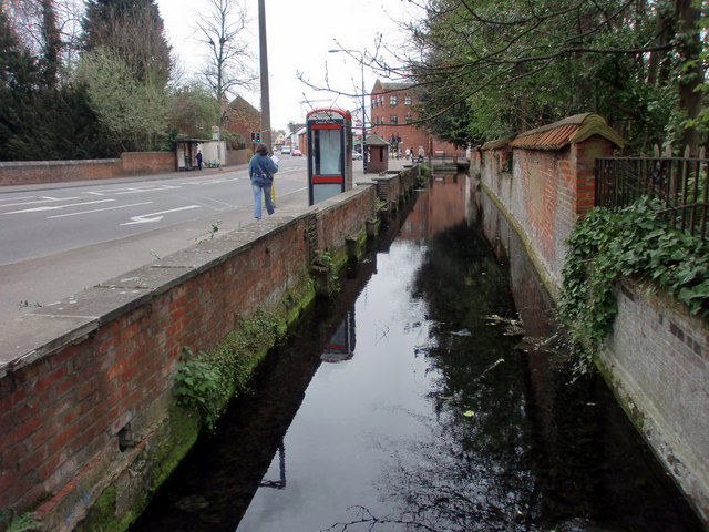 Watercourse by Lake, Bourne Hall, Ewell West, Surrey