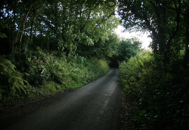 Tregunnick Lane looking towards Seaton