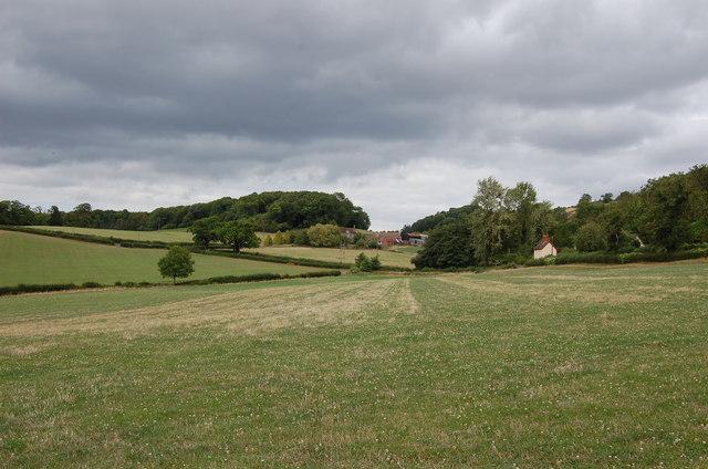 Field near Little Woolpits