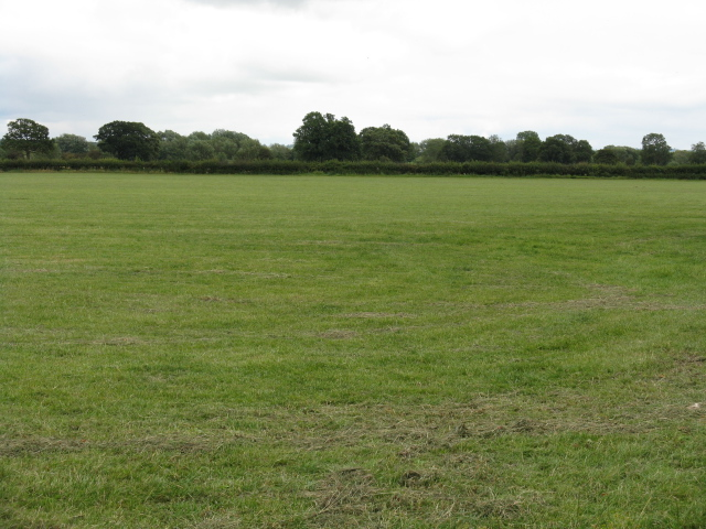 Field off the track to Mousenatch