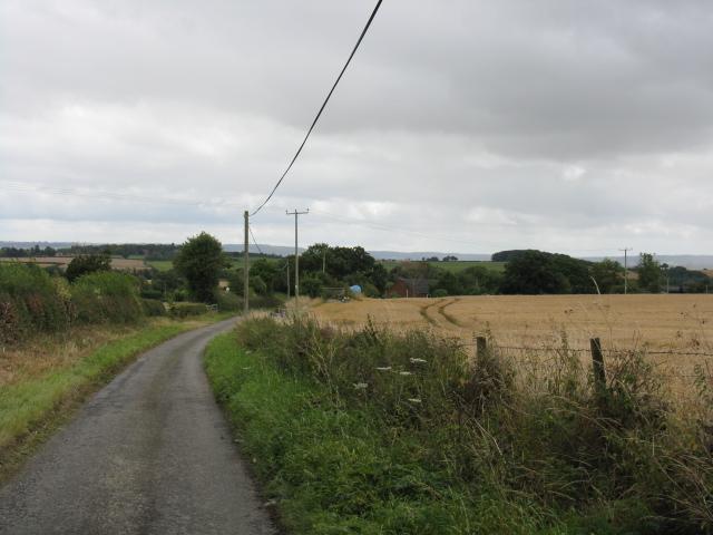 Farmland and the lane to Ledicot