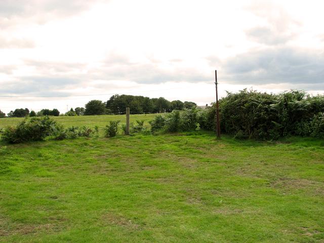 Pasture on Leiston Common