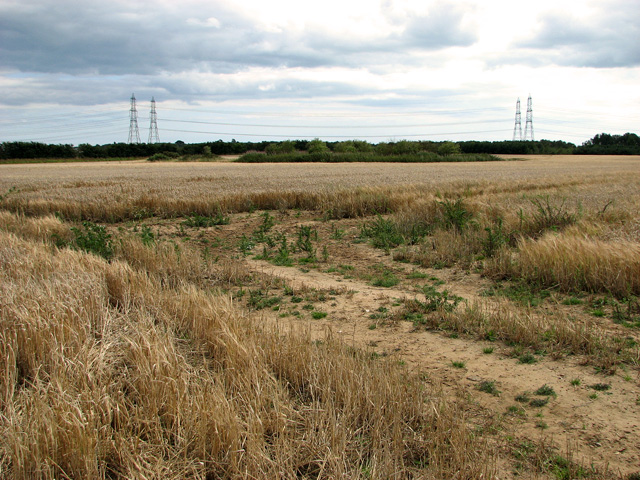 Harvested fields south of Broom Covert, Leiston